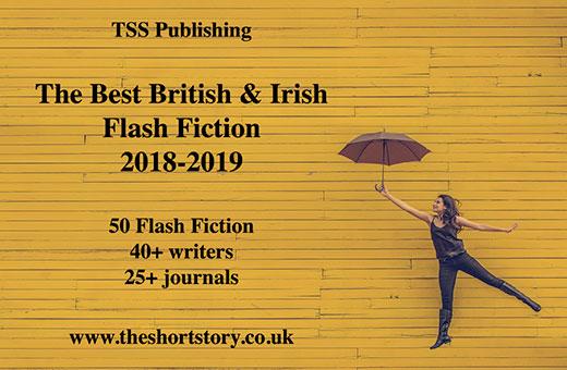 Best British and Irish Flash Fiction 2018-2019